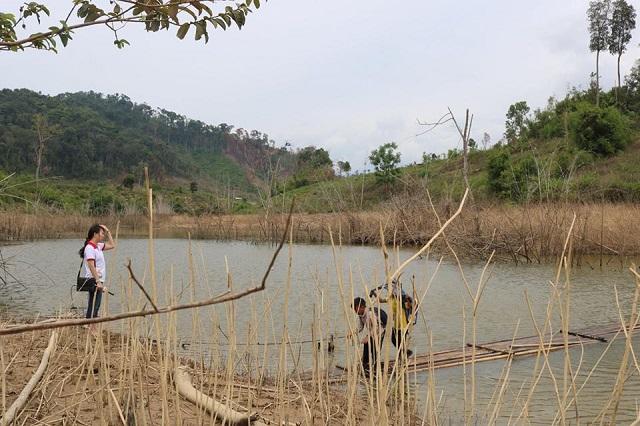 Khảo sát xây cầu Huyện Krong Bông, tỉnh Đắc Lắc